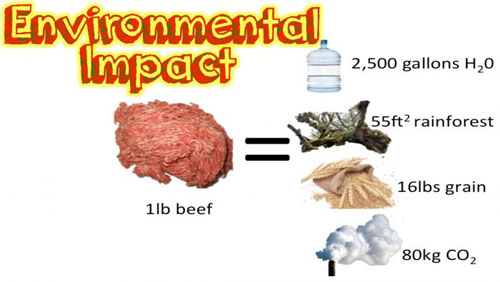 Adopt a Vegan or Vegetarian Diet Environmental Impact