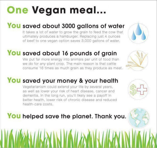 Adopt a Vegan or Vegetarian Diet One Vegan Meal