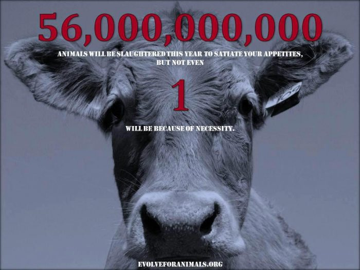 Adopt a Vegan or Vegetarian Diet Evolve for Animals Message