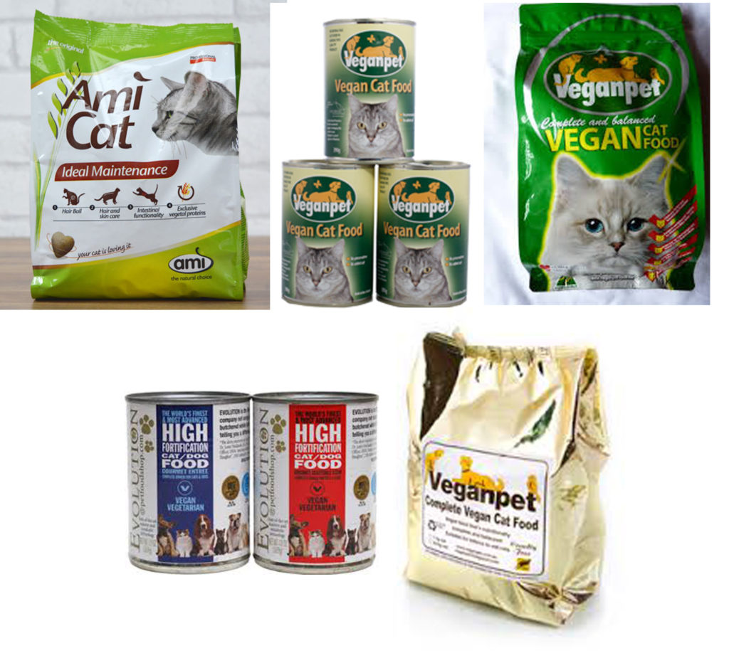 Adopt a Vegan or Vegetarian Diet Various Vegan Cat Food