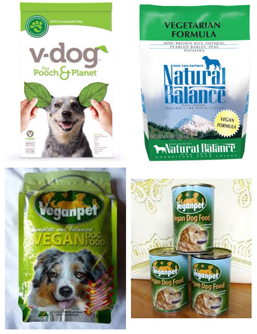 Adopt a Vegan or Vegetarian Diet Vegan Dog Food