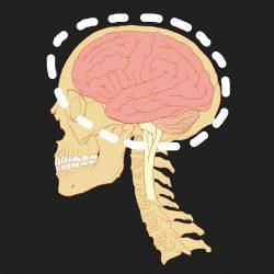 Lack of Undiseased Brains Donated