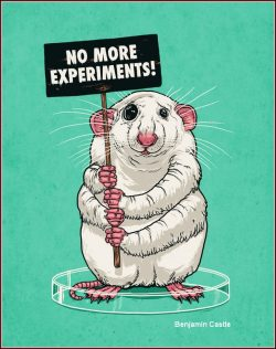 Donate Cells Tissue and Your Body to Help Stop Animal Testing No More Experiments