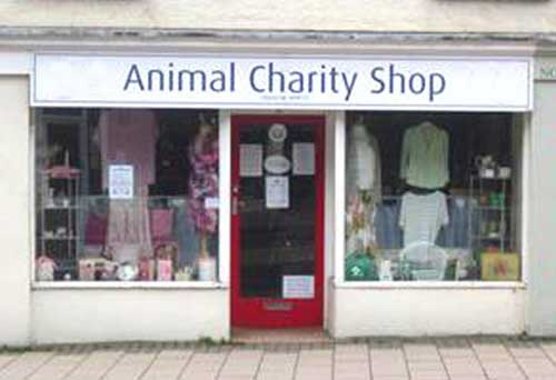 Buy Charity Gifts and Cards at Online Charity Shops Animal Charity Shop