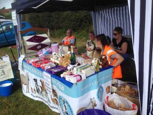 Buy Charity Gifts and Cards at Online Charity Shops Animal Charity Using Donated Unwanted Gift as Tombola Prizes