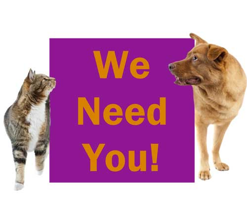 Free Fundraising Ideas and Ways to Earn to Help Animals We Need You!