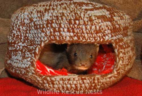 Knitting Ideas to Help Animals Another Design Wildlife Rescue Nests