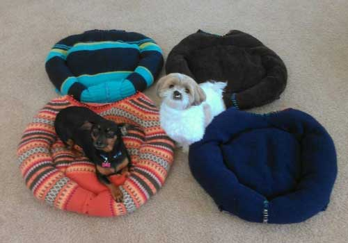 Knitting Ideas to Help Animals DIY Sweatshirt or Sweater Pet Bed