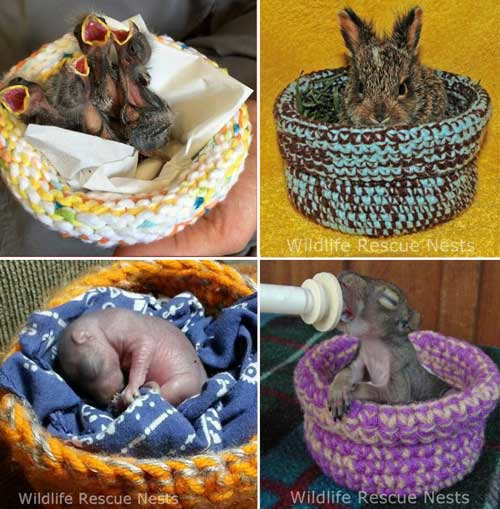 Knitting Ideas to Help Animals Wildlife Rescue Nests Knitted and Crocheted By Volunteers