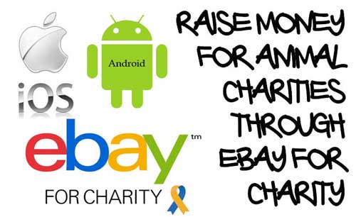 Sell Items on eBay Raise Money for Animal Charities Through eBay for Charity