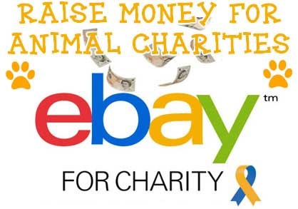Sell Items on eBay Raise Money for Animal Charities