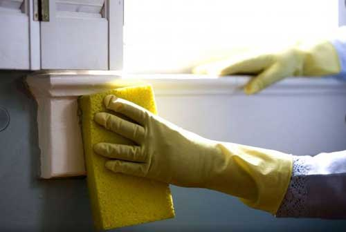 Do Cleaning and Housework to Raise Charitable Funds