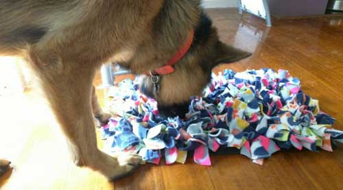 Free Crafting Ideas No Sew Snuggle Mat Helping Animal Rescues and Charities