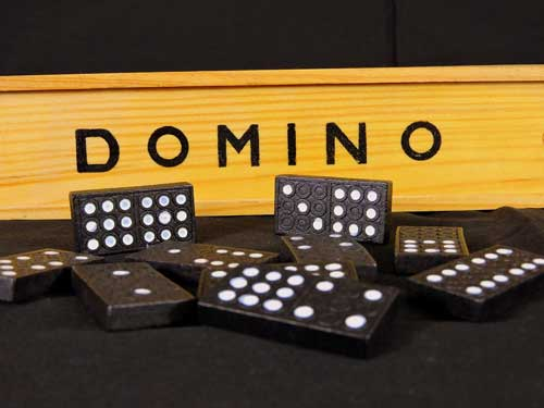 Fundraising Charity Events For Animals Hold a Domino Night to Raise Charity Funds