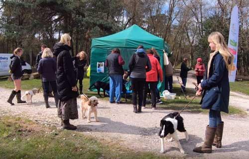 Sponsored Walk at Burnbake Lodges Dorset UK