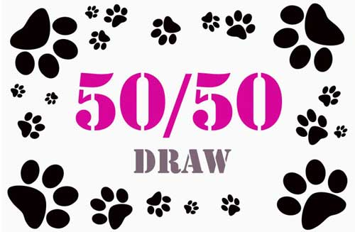 Online Charity Fundraising Events 50-50 Draw