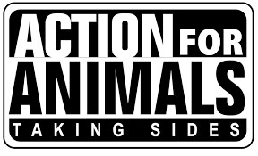 Animal Rights Posters Leaflets Free Action for Animals