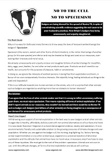 Animal Rights Posters Leaflets Free Badger Cull Leaflet