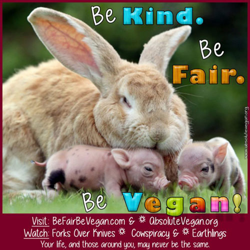 Animal Rights Posters Leaflets Free Be Vegan Poster