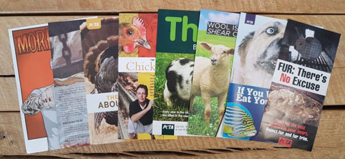 Animal Rights Posters Leaflets Free PETA Leaflets