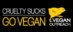Animal Rights Posters Leaflets Free Vegan Outreach