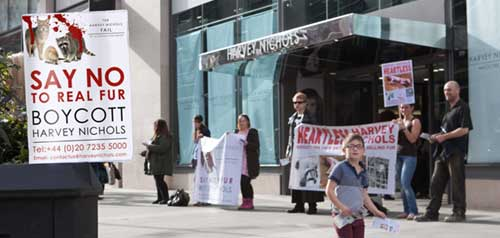 Help Stop Animal Abuse With Protests and Demonstrations Anti Fur Protest Outside Harvey Nicholls