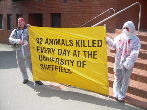 Help Stop Animal Abuse T With Protests and Demonstrations Demonstration Against Animal Experimentation