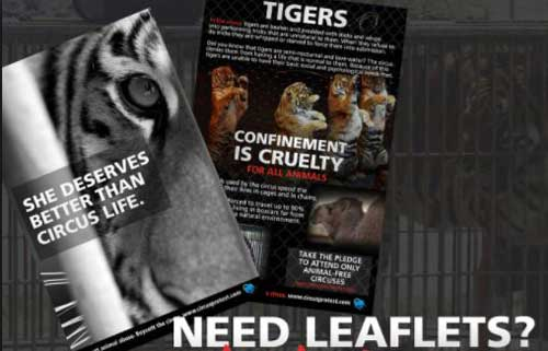 Leaflets Posters And Other Protest Material
