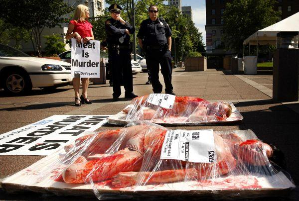 Help Stop Animal Abuse With Protests and Demonstrations PETA Against The Meat Industry