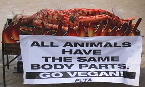 Help Stop Animal Abuse With Protests and Demonstrations PETA Eye Catching Protest Tactics