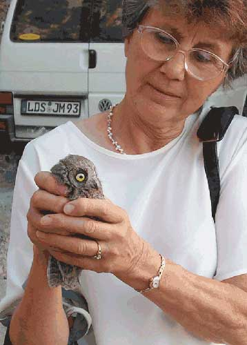 Pet Fostering And Sponsoring Margaret Clurow With A Rescued Owl