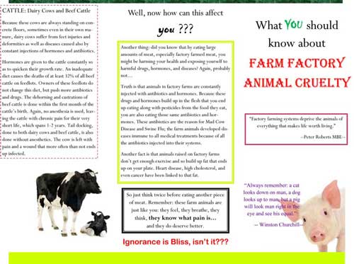 Giving Help To Animals Farm Factory Animal Cruelty Leaflet Front