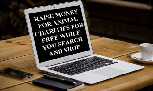 Use A Charity Search Engine To Raise Money
