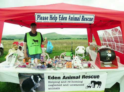 Animal Charity Fundraising Stall