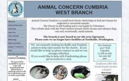 Volunteer With Animals Animal Concern West Cumbria