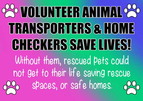 Volunteer Animal Transporters