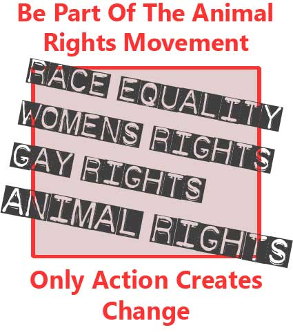 Be Part Of The Animal Rights Movement