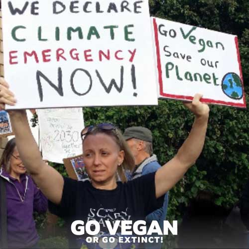Go Vegan Or Go Extinct